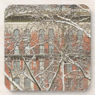 Snow Covered Tree Coaster