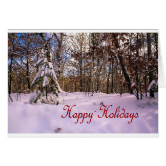 Snow Covered Tree in Northern Wisconsin Card