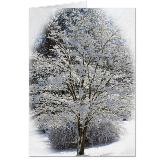 Snow Covered Tree Note Card