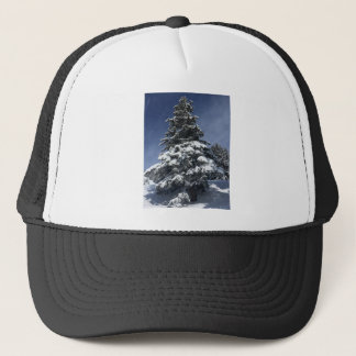 Snow Covered Tree Trucker Hat
