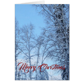 Snow Covered Trees and Blue Sky Card