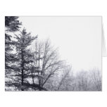 Snow-covered Trees: Horizontal Greeting Cards