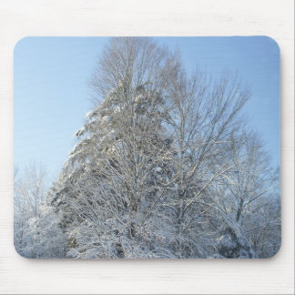 Snow Covered Trees in Morning Sun Mouse Pad