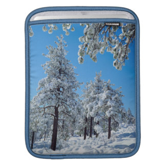 Snow-covered trees in the Laguna Mountains iPad Sleeve
