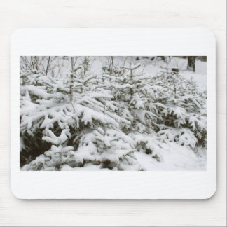 Snow Covered Trees Mouse Pad