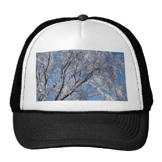 Snow Covered Trees Photograph Square Trucker Hat