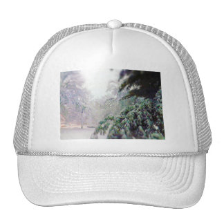 Snow Covered Trees, Pine on KC Street Trucker Hat
