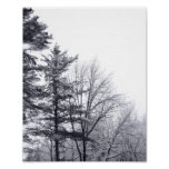 Snow-covered Trees: Vertical Print