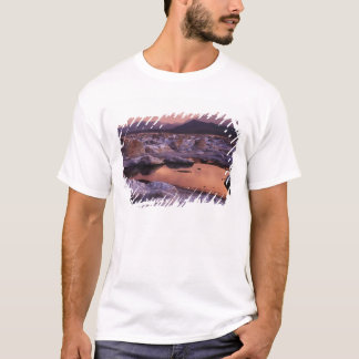 Snow-covered tufas T-Shirt