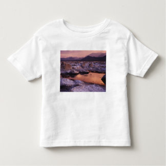 Snow-covered tufas toddler T-Shirt