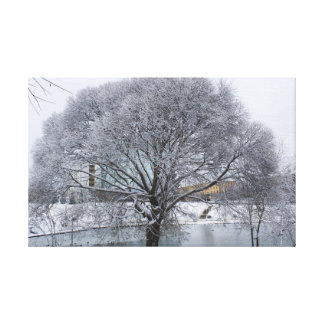 Snow-covered willow in the park canvas print