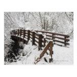 Snow Covered Wooden Bridge Postcard