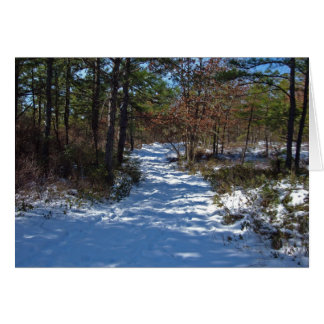 Snow Covered Woodland Path in Winter Greeting Cards