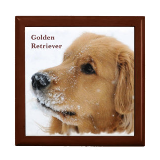 Snow Dog Golden Retriever Gift Box
