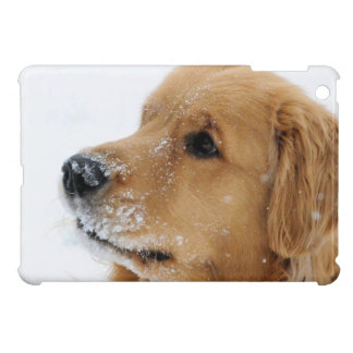 Snow Dog Golden Retriever iPad Mini Cases