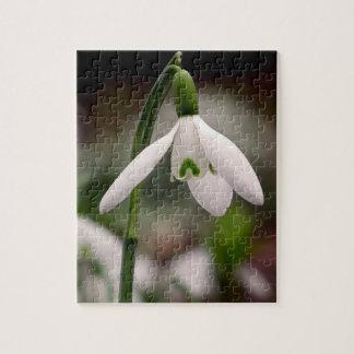 Snow Drop Photo Puzzle