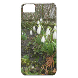 snow drops iPhone 5 case