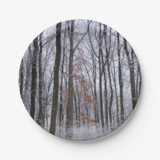 Snow Dusted Forest Winter Landscape Photography Paper Plate