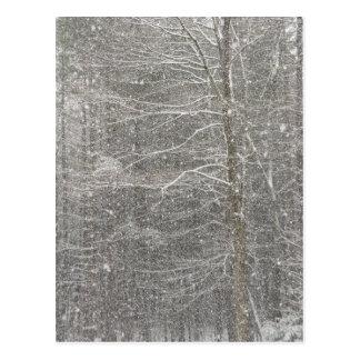 Snow Falling Postcard