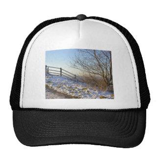 snow fence cap