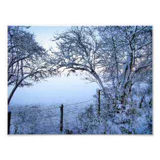 Snow Field Photo Art