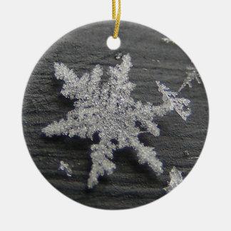 Snow Flake 45 ~ ornament
