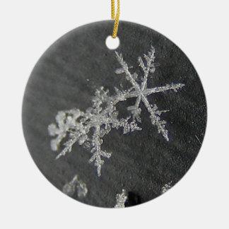 Snow Flake 49 ~ ornament