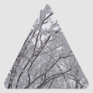 Snow Frosted Branches In Vermont Triangle Sticker