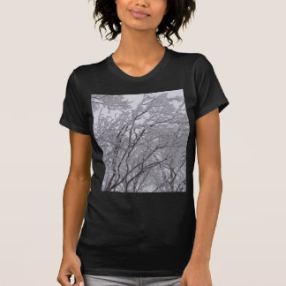 Snow Frosted Branches In Vermont Shirt