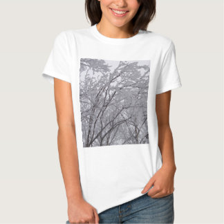 Snow Frosted Branches In Vermont Tshirts
