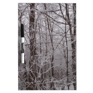 Snow Frosted New England Trees Dry-Erase Whiteboards