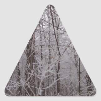 Snow Frosted New England Trees Triangle Sticker