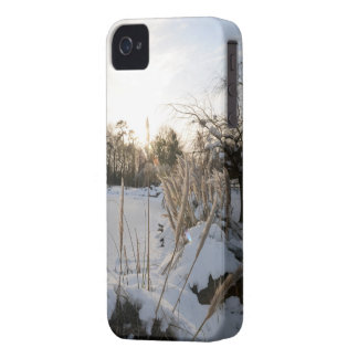 Snow garden iPhone case