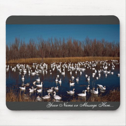 Snow Geese Bosque Del Apache National Wildlife Ref Mouse Pads