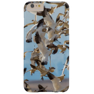 Snow Geese Fill The Sky After Feeding In Barley Barely There iPhone 6 Plus Case