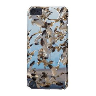 Snow Geese Fill The Sky After Feeding In Barley iPod Touch (5th Generation) Covers