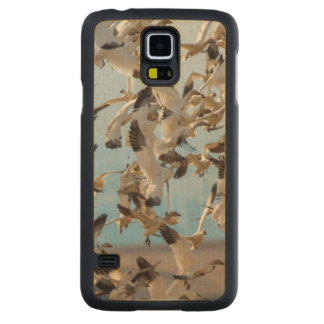 Snow Geese Fill The Sky After Feeding In Barley Maple Galaxy S5 Case