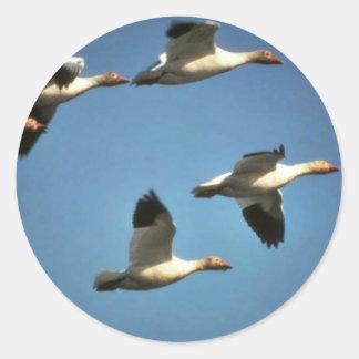Snow Geese in Flight Classic Round Sticker