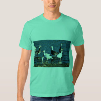 Snow Geese T-shirts
