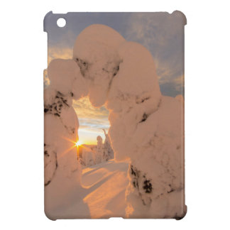 Snow Ghosts In The Whitefish Range iPad Mini Covers