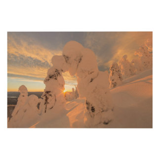 Snow Ghosts In The Whitefish Range Wood Wall Decor