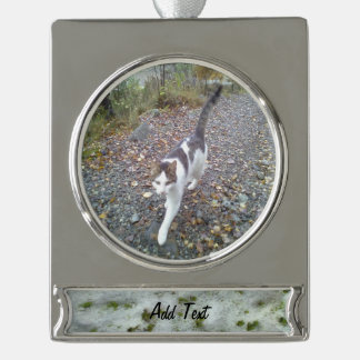 Snow grass silver plated banner ornament
