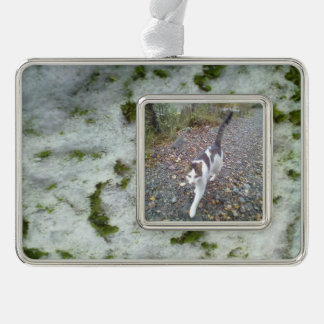 Snow grass silver plated framed ornament