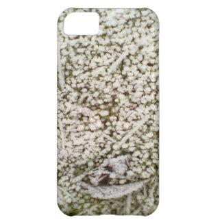 Snow Grass iPhone 5C Case