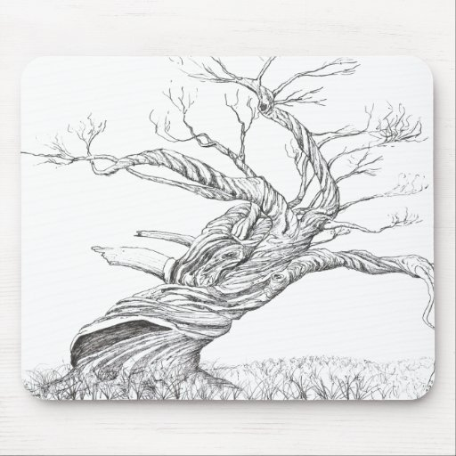 Snow gum twisted trunk black and white ink drawing mouse mats