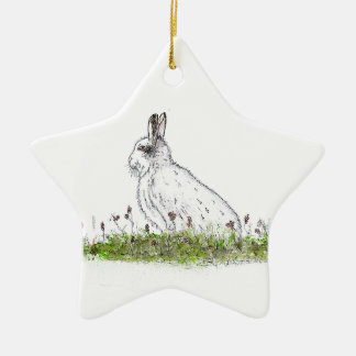 Snow Hare Ceramic Star Decoration