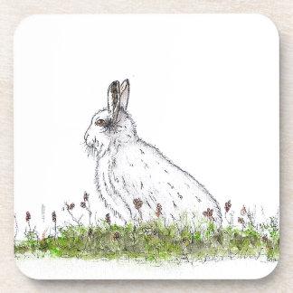 Snow Hare Coaster