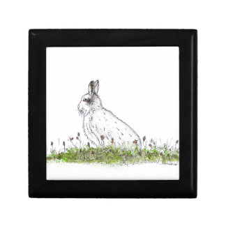 Snow Hare Gift Box