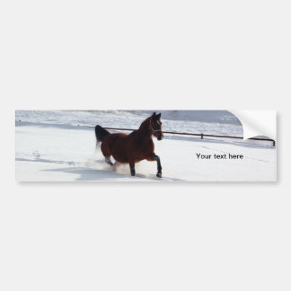 Snow Horse Bumper Sticker