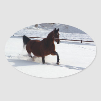Snow Horse Oval Sticker